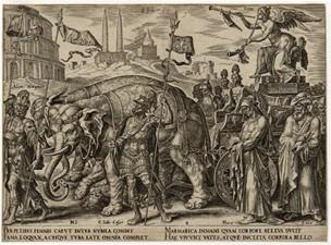 Cato elephant print